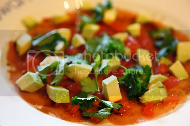 The Swan at Southrop,The Cotswolds,Carpaccio of Tuna with Avocado